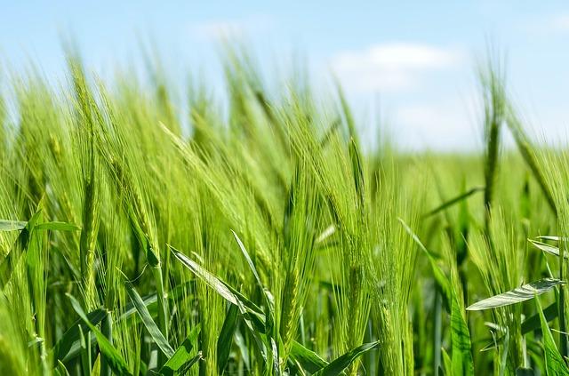 Курс по агроекология